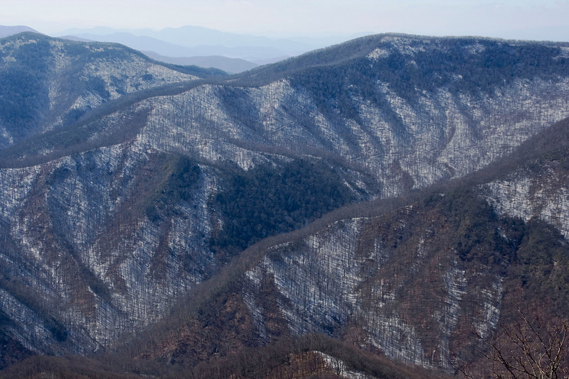 winter view from Scaly Bald, NC