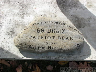 Patriot Bear, Cherokee NC