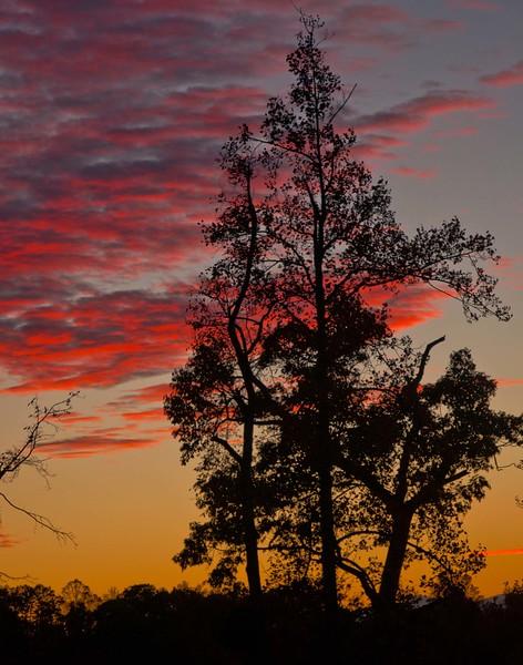 North Carolina Sunset