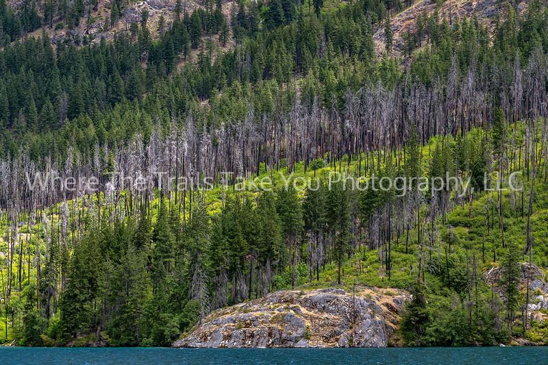 6.  Diagonal Layers, Lake Chelan National Recreation Area