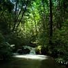 Coleman River