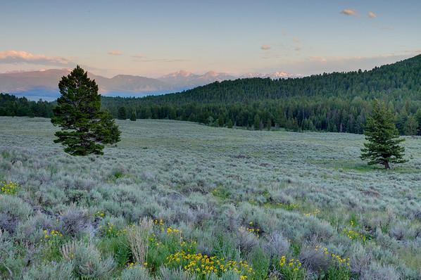 North Meadow Creek - McAllister Montana