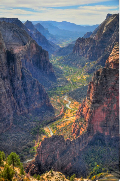 Observation Point Overlook, Zion National Park.