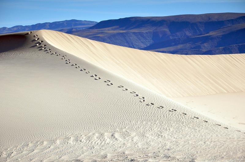 Panamint Dunes, Death Valley National Park.