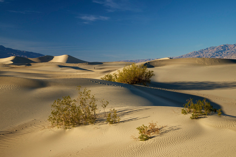Mesquite Flat Sand Dunes, Death Valley National Park