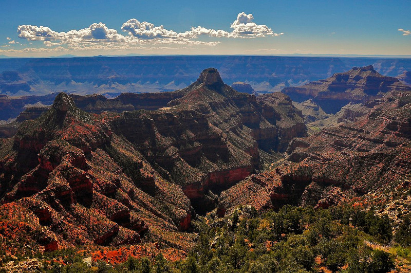 Widforss Point, North Rim, Grand Canyon National Park.