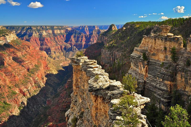The Transept, North Rim, Grand Canyon national Park.