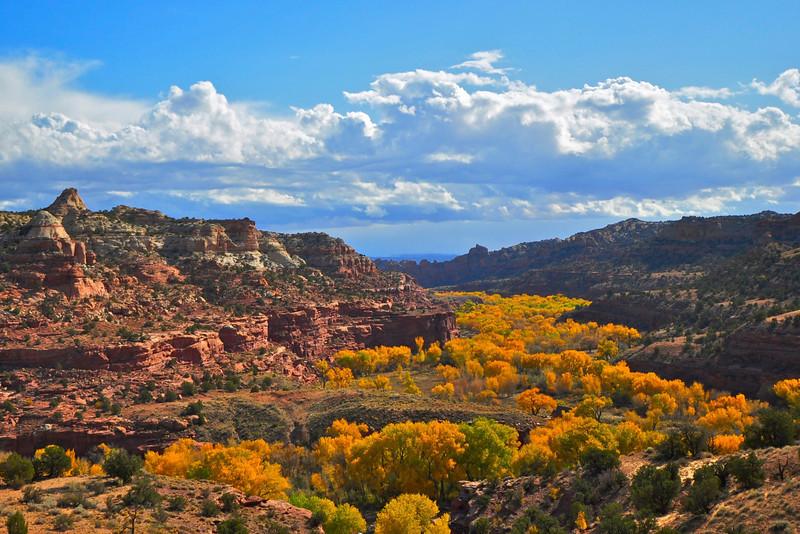 Escalante River Valley, Boulder, Utah.