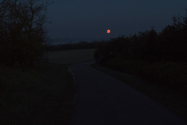 Orange moon, chilly May morning at 4:30