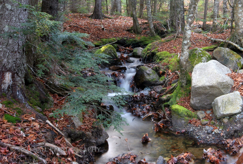 Mountain Stream leading into the west branch of the Penobscot River. Image taken just off the Golden Road at Nesowadnehunk Falls.