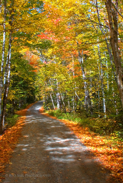 Tote Road near Kidney Pond.