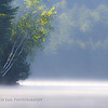 """Birches"".. A cool summer morning creates the heavy mist to rise from the warm lake water."