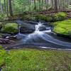Parks Pond Stream