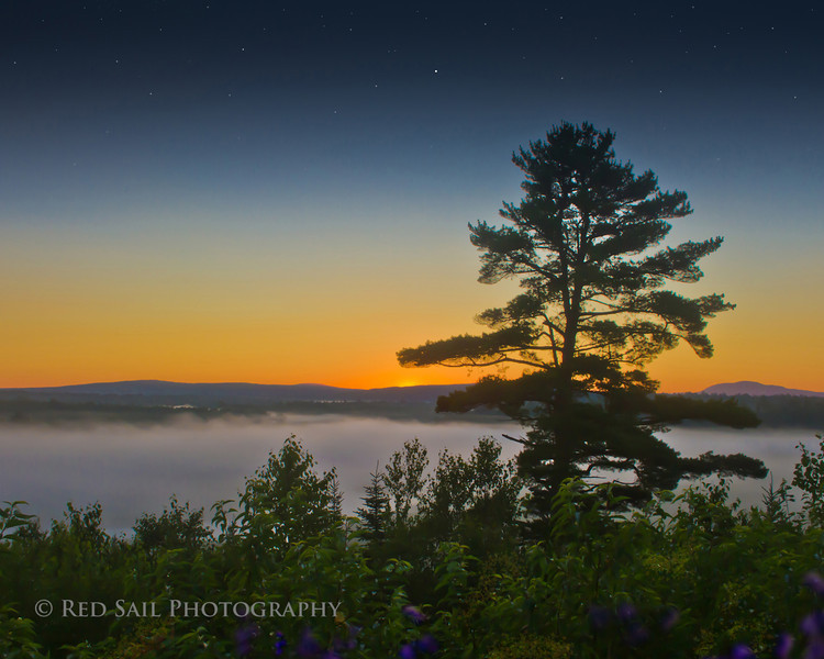 """""""Fog in the Valley"""""""