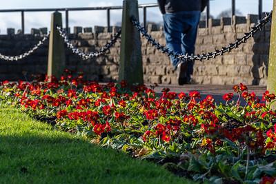 Knaresborough Castle Gardens