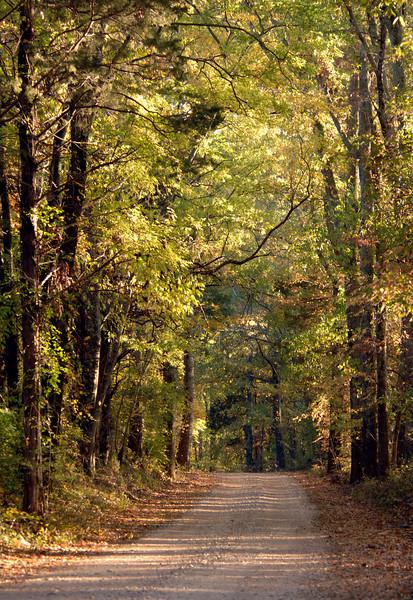 Wheeler Wildlife Refuge, Alabama