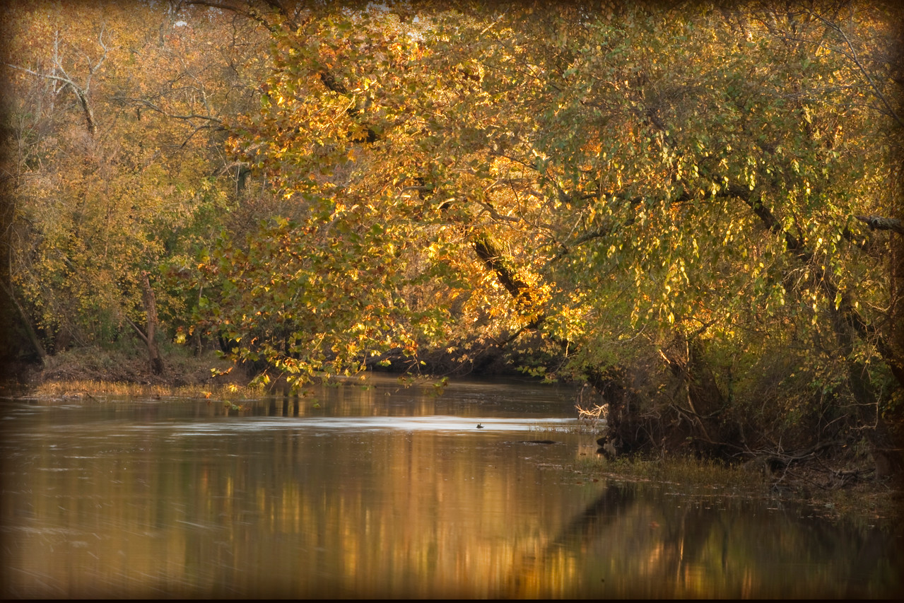 Flint River, Hays Nature Preserve, Huntsville, Alabama