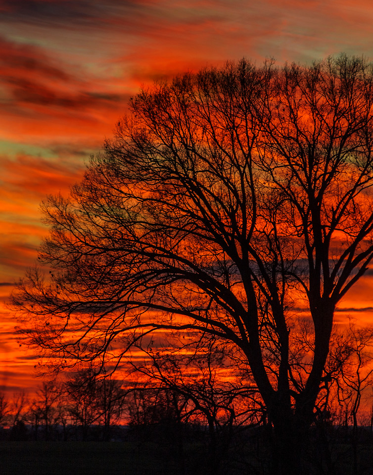 February 1, 2014 - Detail of previous wide shot, Vibrant sunset 10 miles NW of Mooresville Alabama