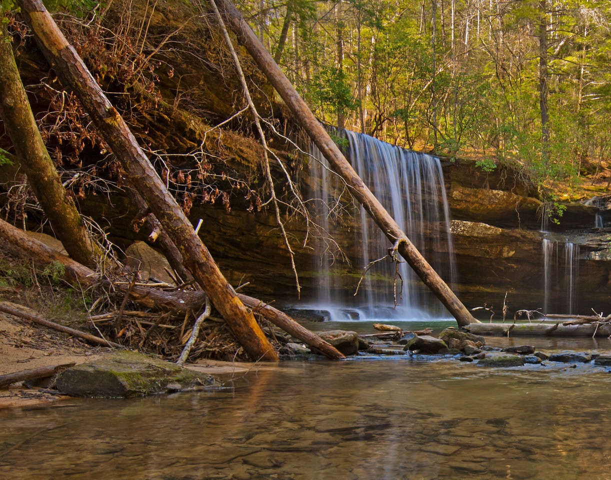 Bankhead National Forest, Alabama