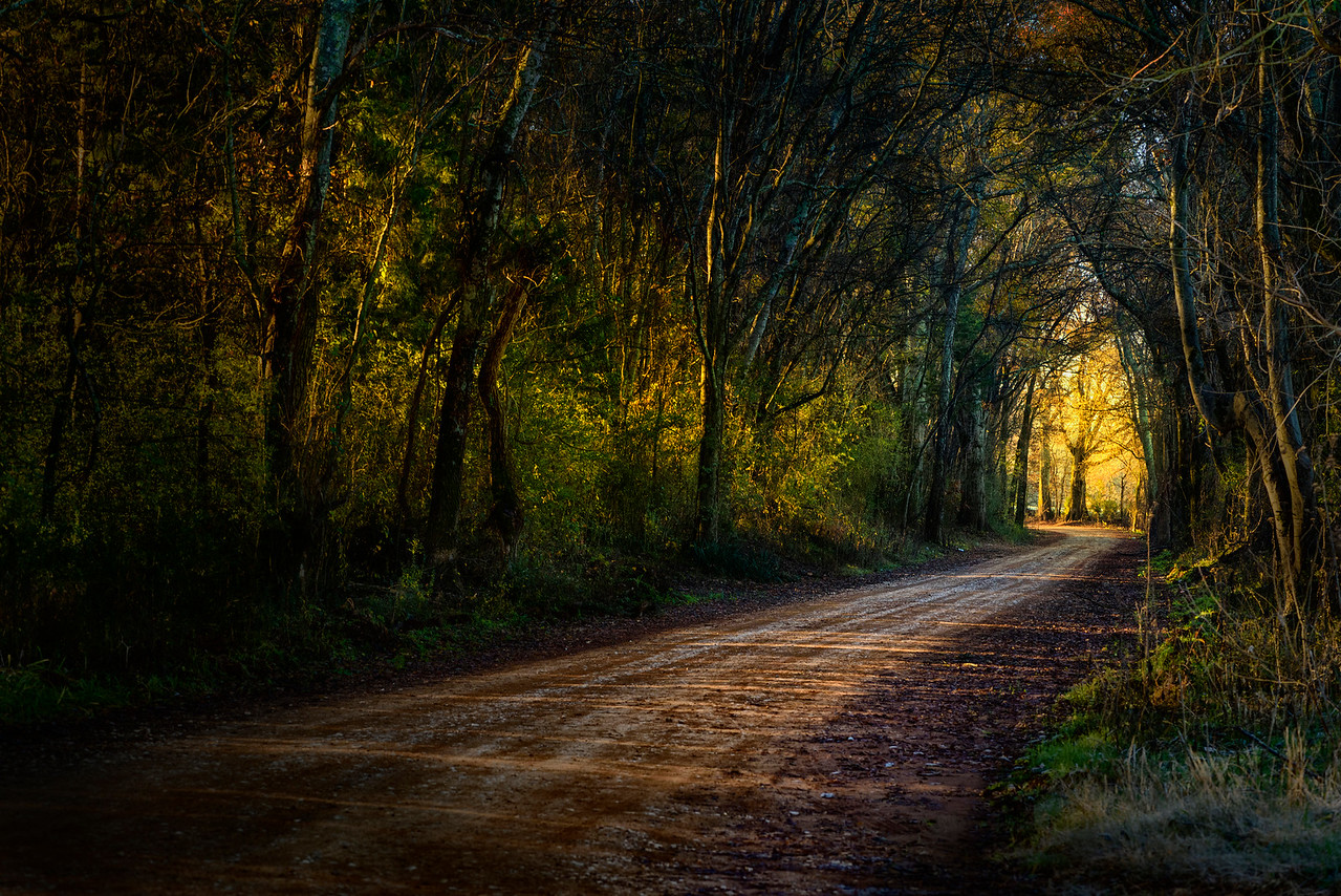 Light at the End of Your Road