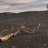 Sunset Crater<br /> 2013<br /> Not recommended for enlargement