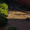 Canyon de Chelly<br /> 2014