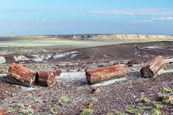Petrified Forest National Park<br /> 2016