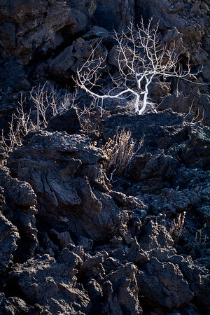 Sunset Crater<br /> 2018