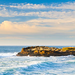 San_Mateo_Northern_California_Coast_Surf_Waves