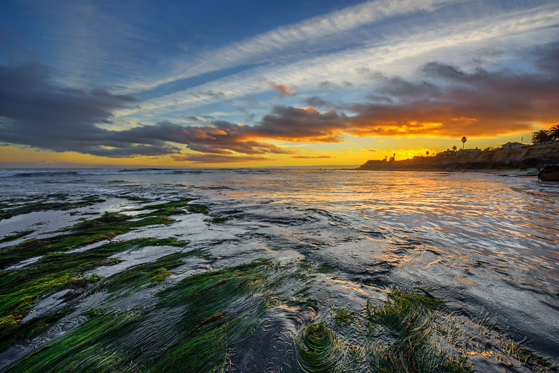 """Capitola Winter Sunset"" I took this last weekend while down in Capitola for sunset near Pleasure Point, California. The low tide had the seaweed that made for an interesting foreground. Jack O'Neill's (O'Neill surf shops) house is there at the point in the background. The water was swirling around while the clouds gave a nice glow and silhouette of the palm trees and beaches along the coastline. Who wants to plunk down there chair here and hang out for sunset (besides me!). Feel free to share and like if you enjoy it. — at Pleasure point in Capitola, Northern California near Santa Cruz"