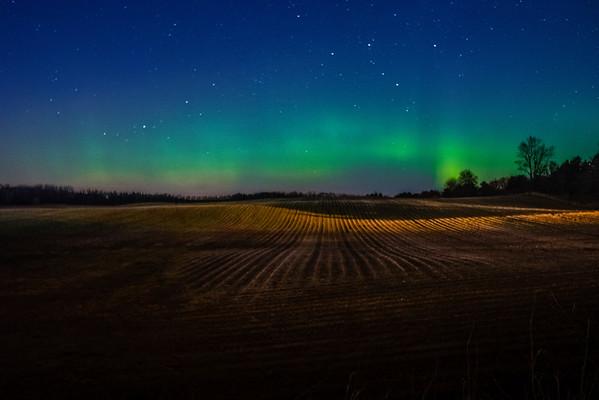 Minnesota Northern Lights. Urban Northern Lights, Aurora Borealis in Central Minnesota, Lake Elmo