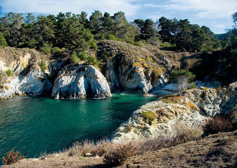 Cove, Point Lobos State Park