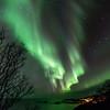 Northern lights over Nyksund, Christmas day 2013 - V