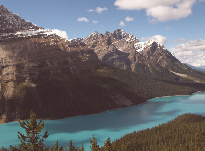 Peyto Lake - It's turquoise due to glacial sediment in the water that reflects the sky.  The water looks really thick, like you could stir it.
