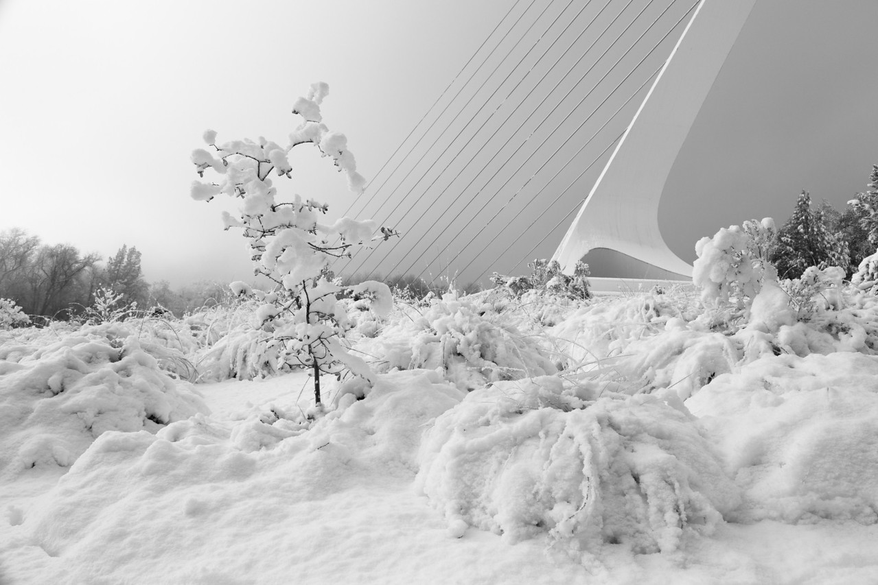 Sundial Bridge and Snow BW