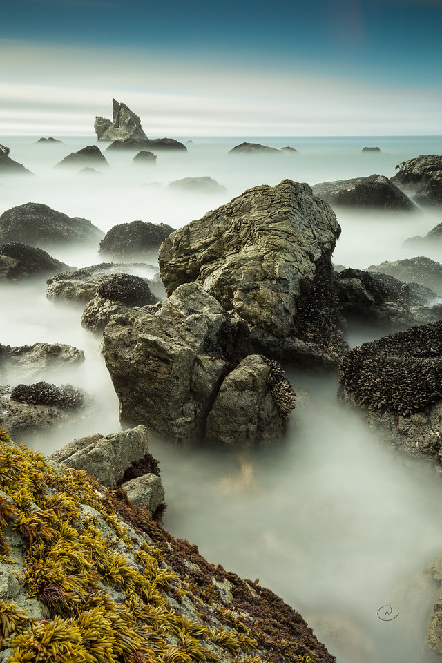 Mussel Rocks at Patrick's Point