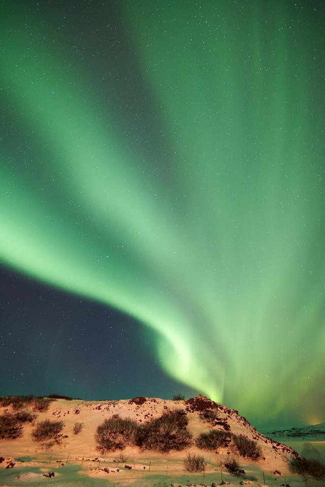 IcelandD85_1159