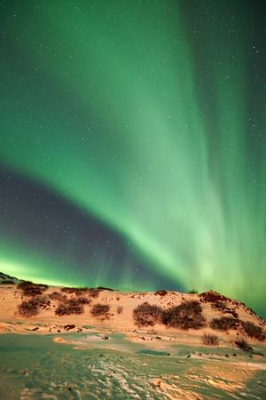 IcelandD85_1178