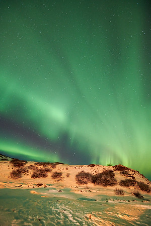 IcelandD85_1174