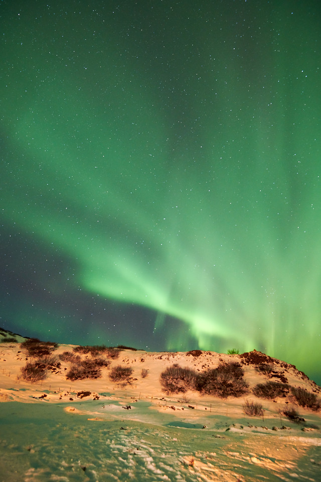 IcelandD85_1172