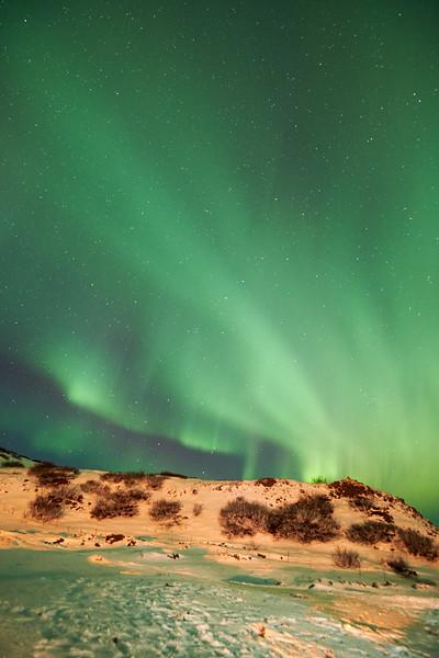 IcelandD85_1173
