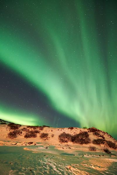 IcelandD85_1177