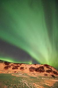 IcelandD85_1179
