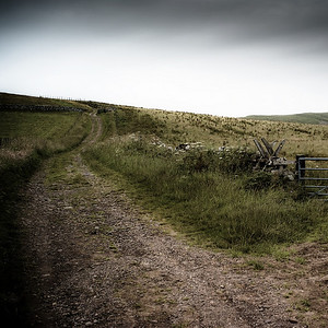 Clennel Street, drovers' road across the borders, Northumberland UK