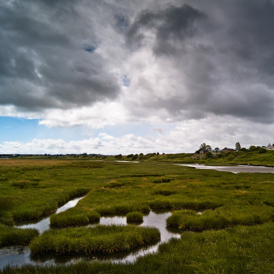 Salt water marsh, Warkworth New Town (14th century), looking towards Amble, Northumberland UK