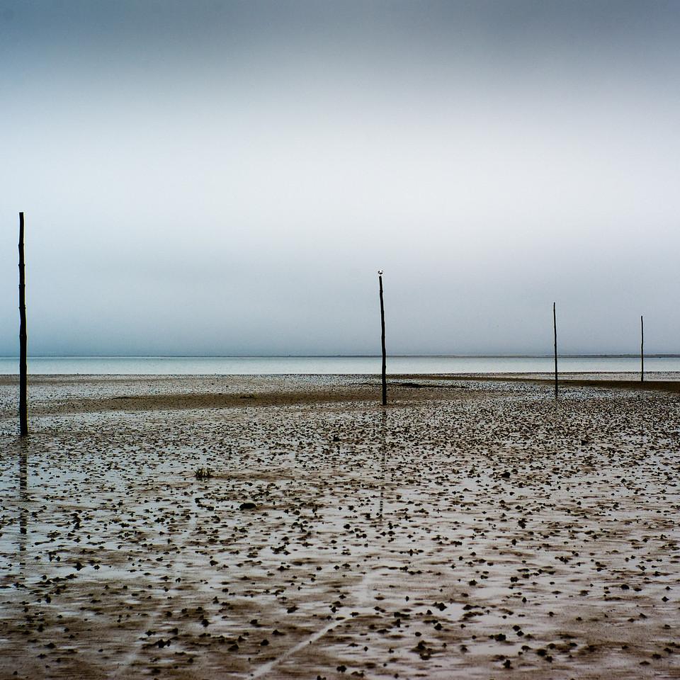 Pilgrims' Way, across to the Holy Island of Lindisfarne, Northumberland UK