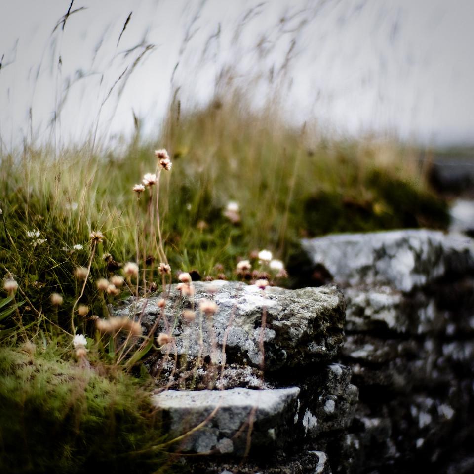 Dunstanburgh, Northumberland UK, castle walls
