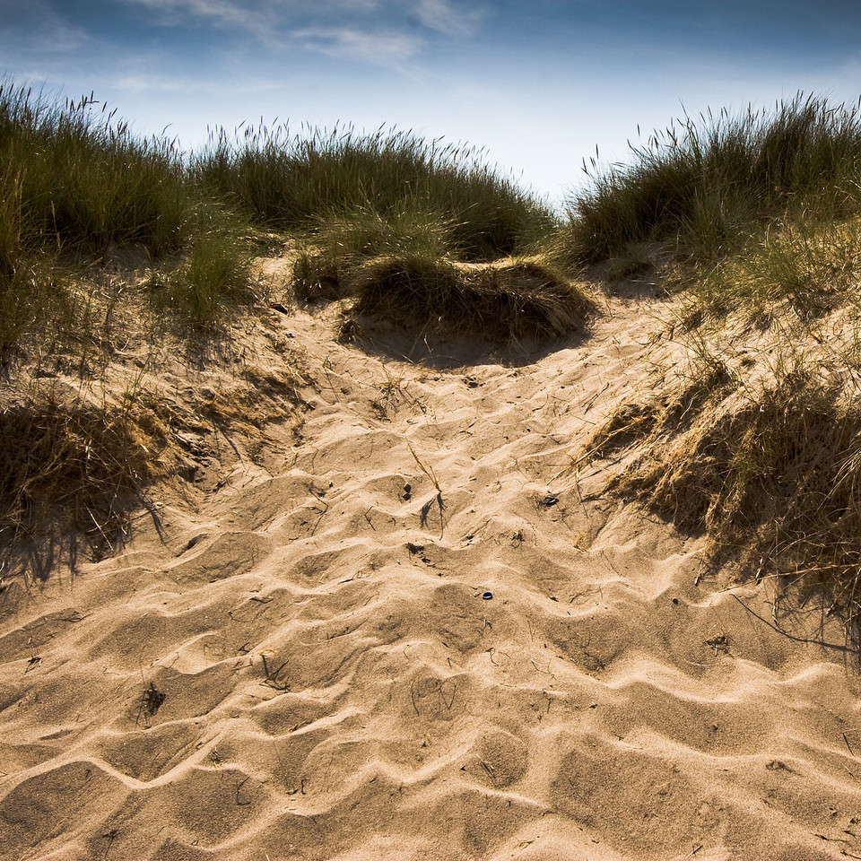 Warkworth, Northumberland UK, the dunes