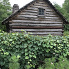 Log cabin - Toledo Botanical Gardens