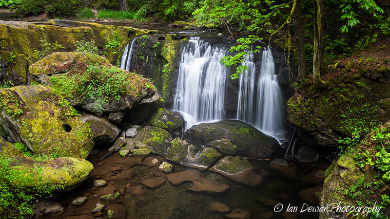 Whatcom Falls in Bellingham in Summer